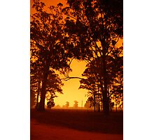Orange Haze Photographic Print