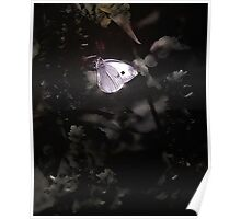 A Butterfly Moment Poster