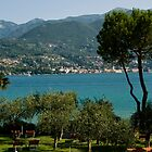 Lake Garda - Porte Portesse view.... by imagic