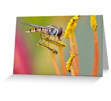 Pollen Hoover Greeting Card