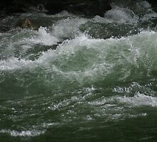 Waves on the Snohomish River by Loisb