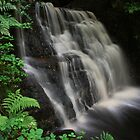 Tigers Clough Waterfall by Paul Gibbons