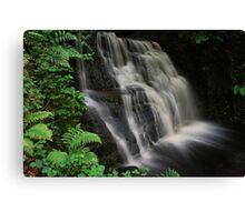 Tigers Clough Waterfall Canvas Print