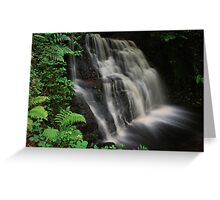 Tigers Clough Waterfall Greeting Card