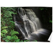 Tigers Clough Waterfall Poster