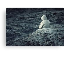 Cold and Alone Canvas Print