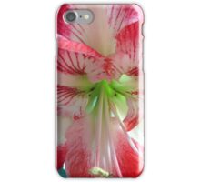 And orchid iPhone Case/Skin