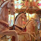Carousel Horses by searchlight