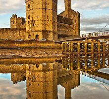 Caernarfon castle at dusk by Shaun Whiteman