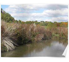 Wetlands Grass Poster