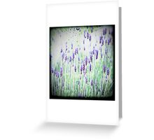 Lavender's Blue Dilly Dilly Greeting Card