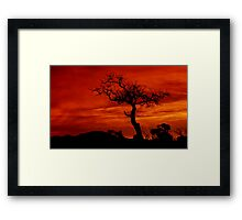 """Silhouettes at Sunrise"" Framed Print"