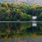 Autumn Woodland - Grasmere, Cumbria, England by Craig Joiner