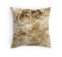 Cliffhanger Throw Pillow