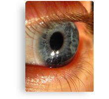 Blue Eye Macro Canvas Print