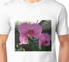 Phalaenopsis -The Moth Orchid Unisex T-Shirt