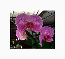 Phalaenopsis -The Moth Orchid Unisex T-Shirt