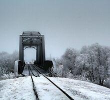 The Railroad Trestle by Larry Trupp