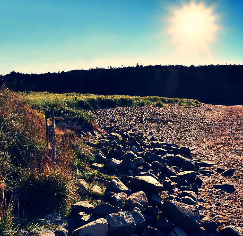 Sand Beach Sunlight by Lyana Lynn
