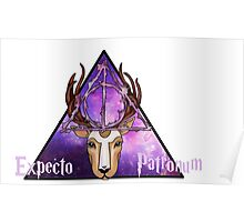 ~Expecto Patronum~ Harry Potter Poster