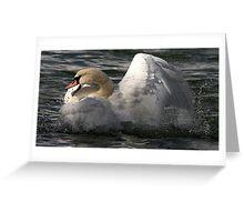 Raging Swan Greeting Card