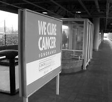 Cancer Cure at the Train Station by Jimmy Durham