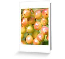 Spherical Challenge Greeting Card