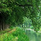 Walking along a quiet Dutch canal by jchanders