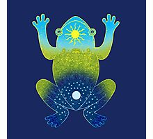 Day and Night Frog Photographic Print