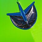 It's a Bird....No It's a Plane by Rebecca Cozart