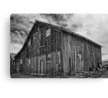 pointing north Canvas Print