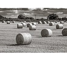 Hay Barrels in a Field Photographic Print