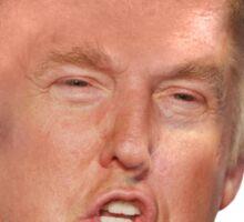 The Donald Sticker
