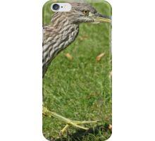 Heron hopscotch iPhone Case/Skin