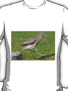 Heron hopscotch T-Shirt
