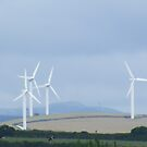 Windmills. by Livvy Young