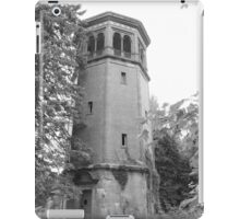 Swannanoa Watch Tower iPad Case/Skin