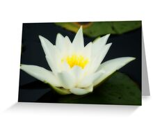 Lily of Enlightenment And Love ~ The Orton Effect ~ Greeting Card
