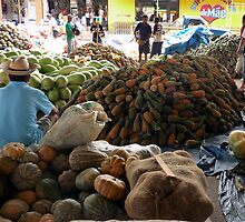 Market at Santarem, Brazil by Lucinda Walter