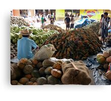 Market at Santarem, Brazil Canvas Print