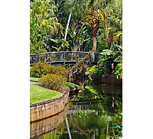 Cypress Gardens, Florida Photographic Print