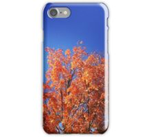 Complementary, My Dear iPhone Case/Skin