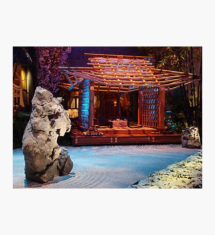 japanesse garden Photographic Print