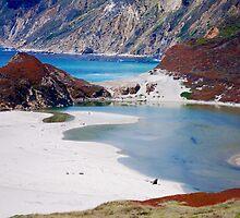 Coastal Colors by Carol Barona