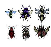 Bugs by Harrie Pilkington