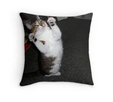 I Didn't Do It! Throw Pillow