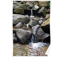Buderim Waterfall, Sunshine Coast Queensland Poster