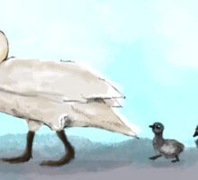 Swans Crossing Sticker