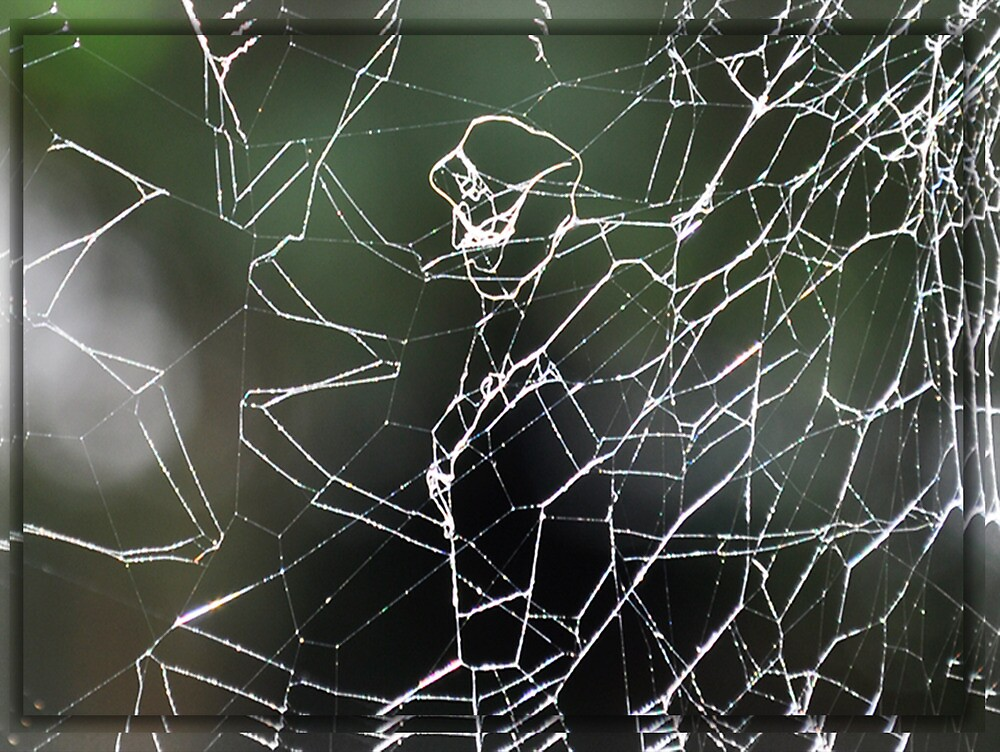 Man's Life's Tangled Web He Weaves by kazab