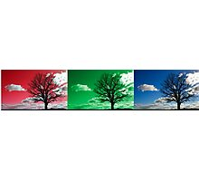 Tri scene silhouette landscape Photographic Print